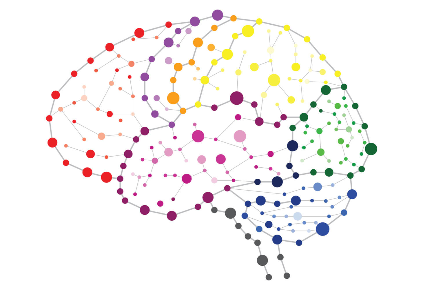 Graphic depicting the brain network
